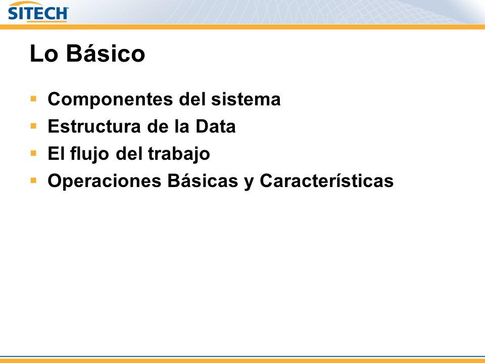 Lo Básico Componentes del sistema Estructura de la Data