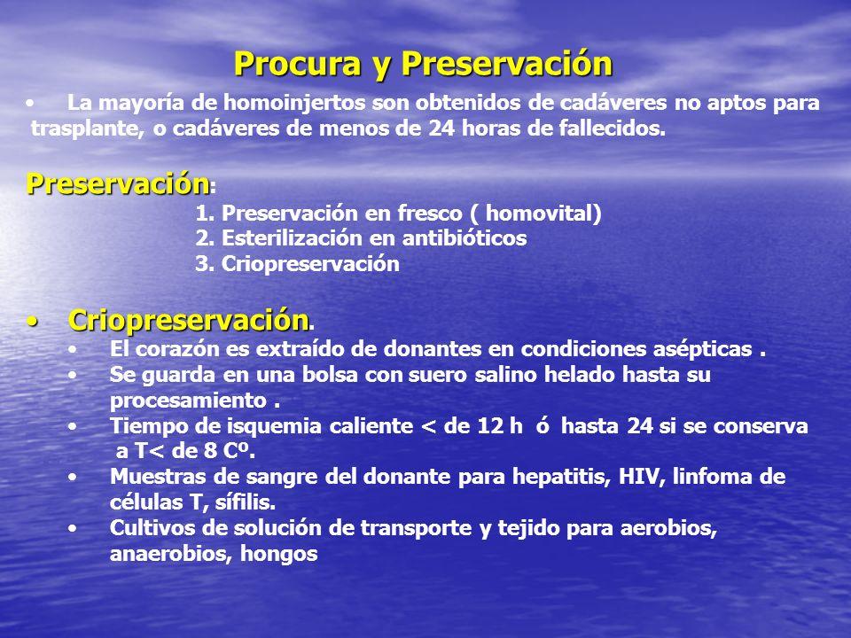 Procura y Preservación
