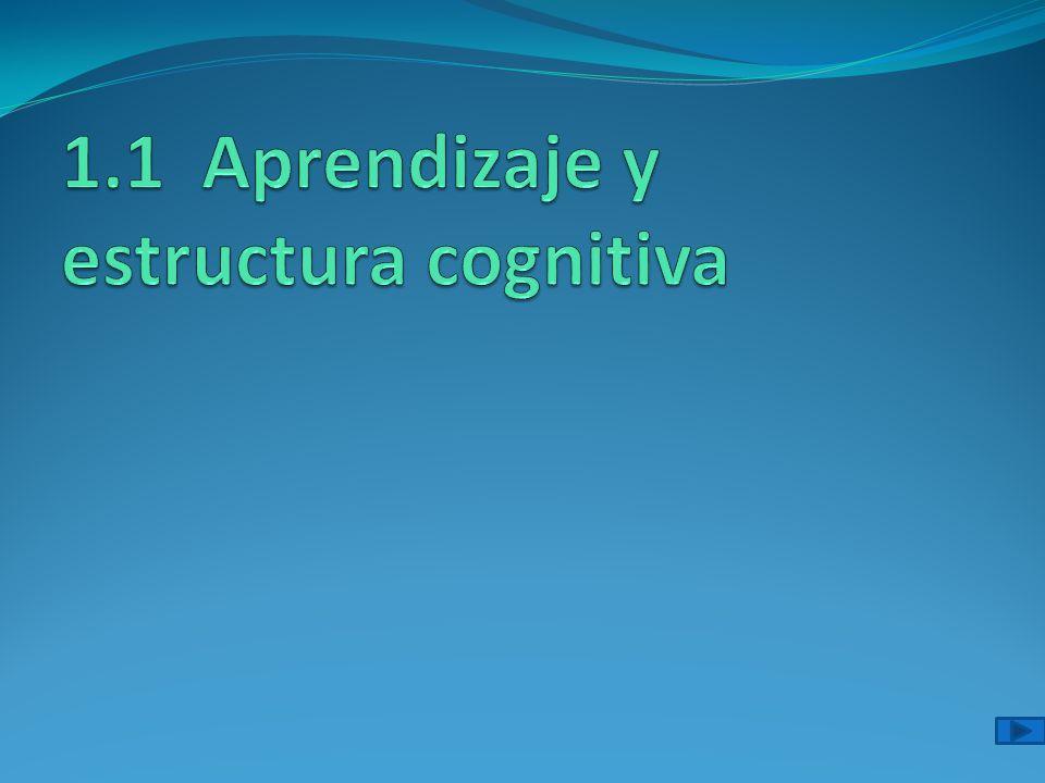 1.1 Aprendizaje y estructura cognitiva