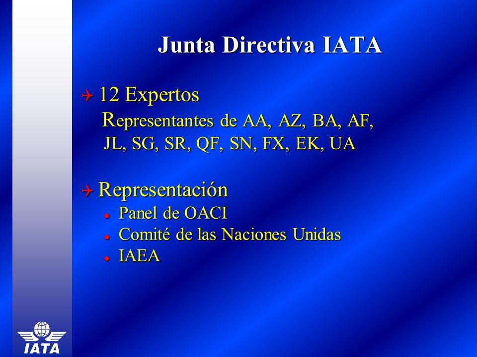 Junta Directiva IATA 12 Expertos Representantes de AA, AZ, BA, AF,