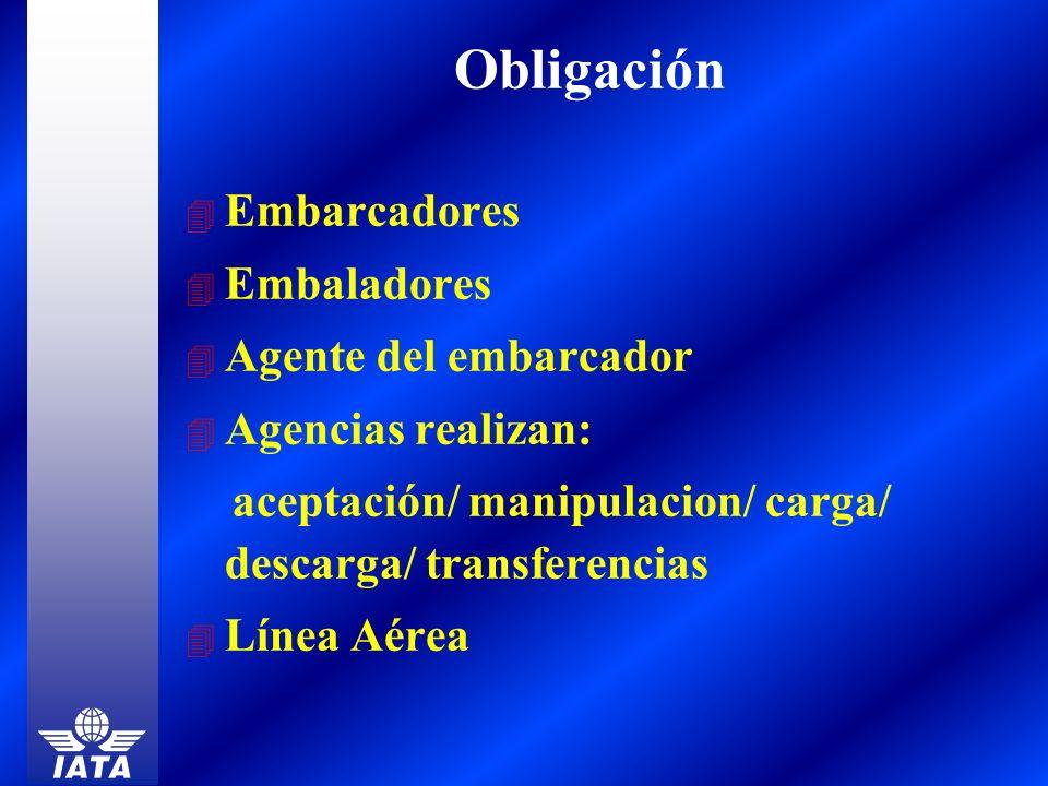 Obligación Embarcadores Embaladores Agente del embarcador