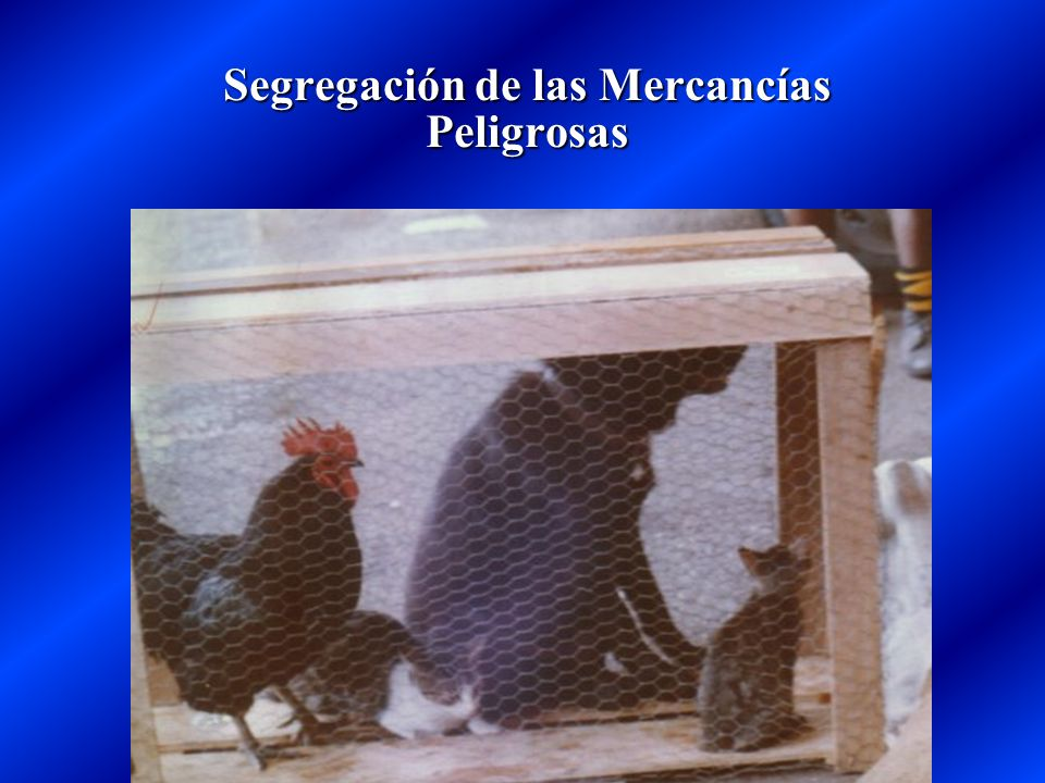 Segregación de las Mercancías Peligrosas