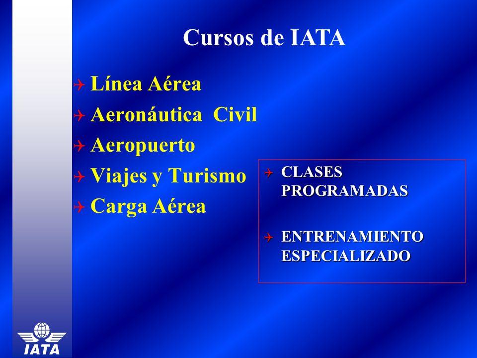 Cursos de IATA Línea Aérea Aeronáutica Civil Aeropuerto