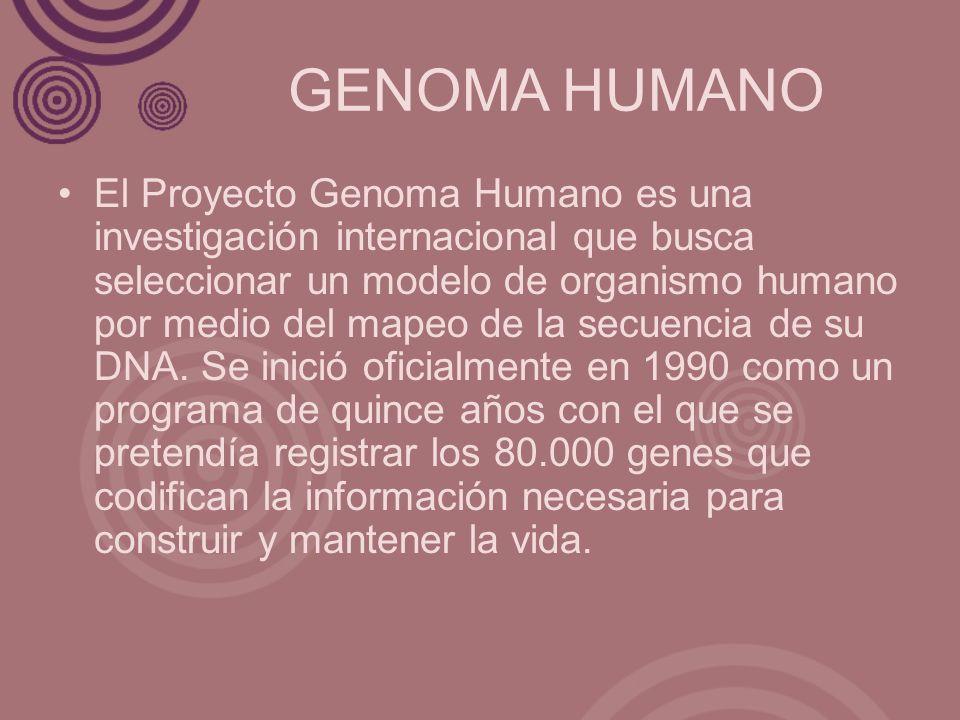 GENOMA HUMANO
