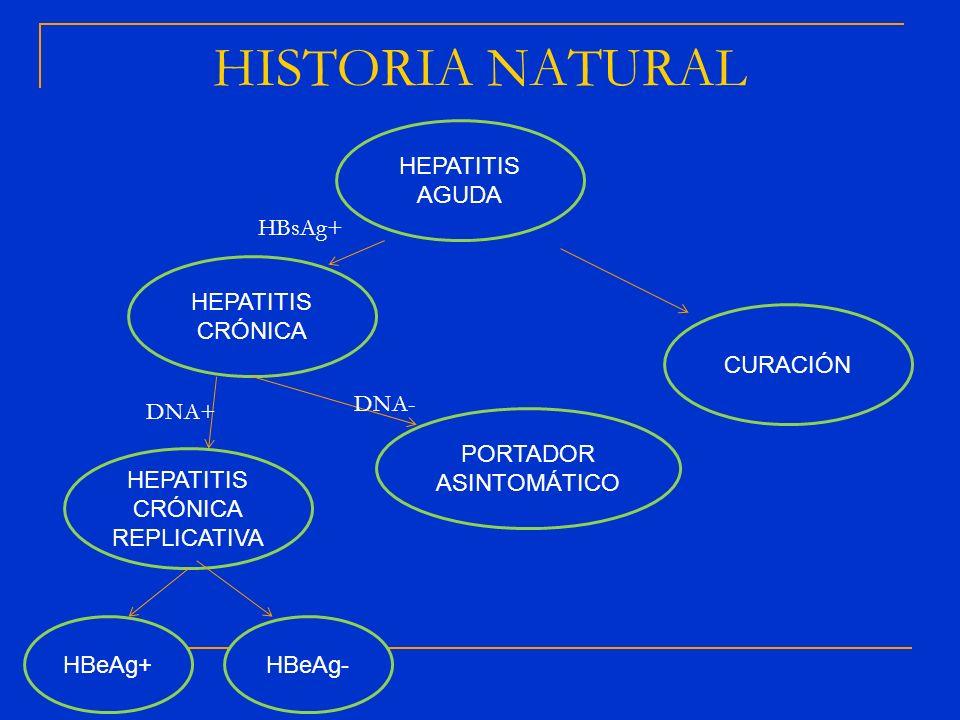HISTORIA NATURAL HEPATITIS AGUDA HBsAg+ HEPATITIS CRÓNICA CURACIÓN
