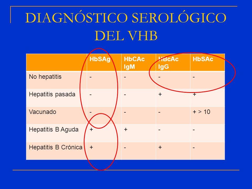 DIAGNÓSTICO SEROLÓGICO DEL VHB