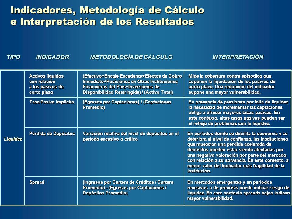 Indicadores, Metodología de Cálculo e Interpretación de los Resultados