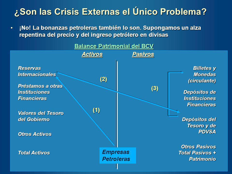 ¿Son las Crisis Externas el Único Problema