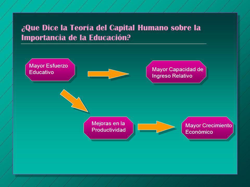 ¿Que Dice la Teoría del Capital Humano sobre la Importancia de la Educación