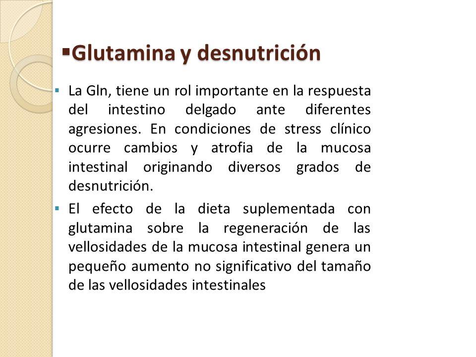 Glutamina y desnutrición