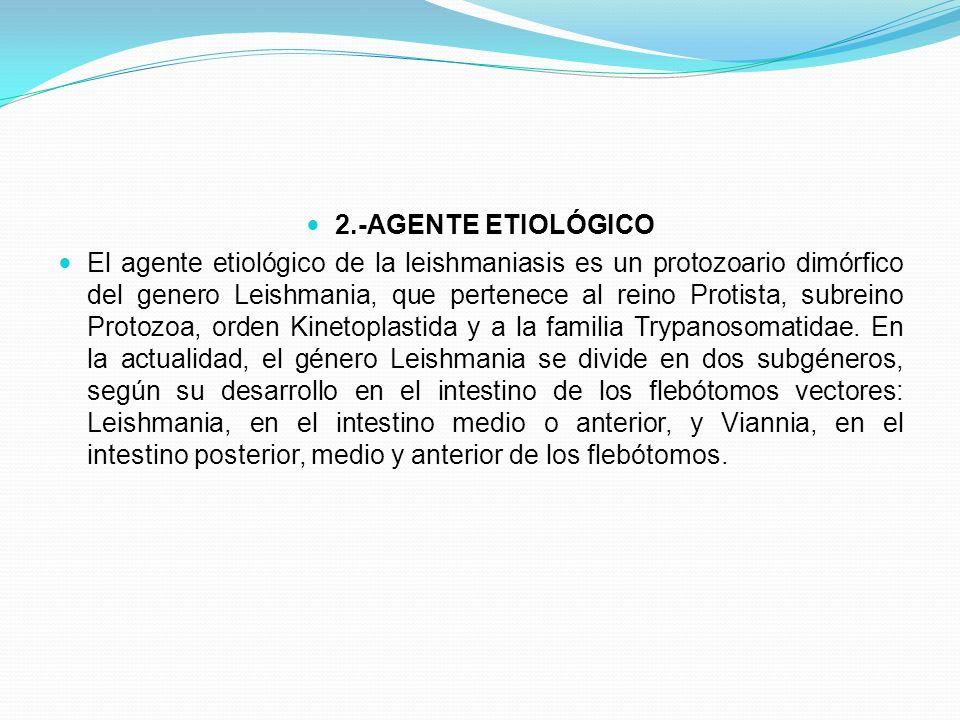 2.-AGENTE ETIOLÓGICO