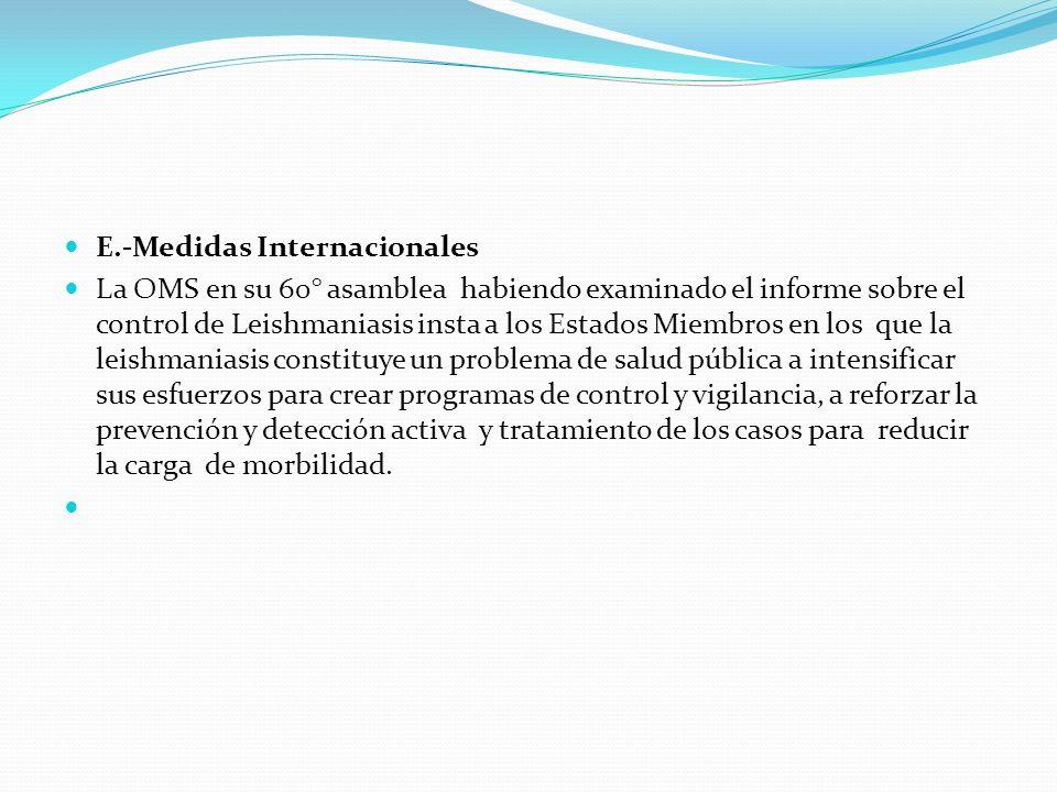 E.-Medidas Internacionales