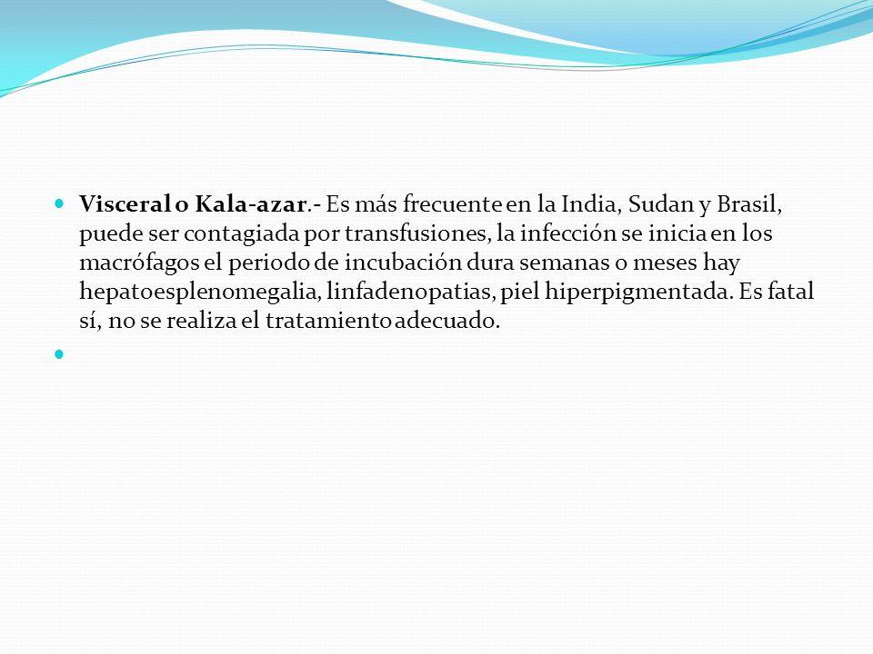 Visceral o Kala-azar.- Es más frecuente en la India, Sudan y Brasil, puede ser contagiada por transfusiones, la infección se inicia en los macrófagos el periodo de incubación dura semanas o meses hay hepatoesplenomegalia, linfadenopatias, piel hiperpigmentada. Es fatal sí, no se realiza el tratamiento adecuado.