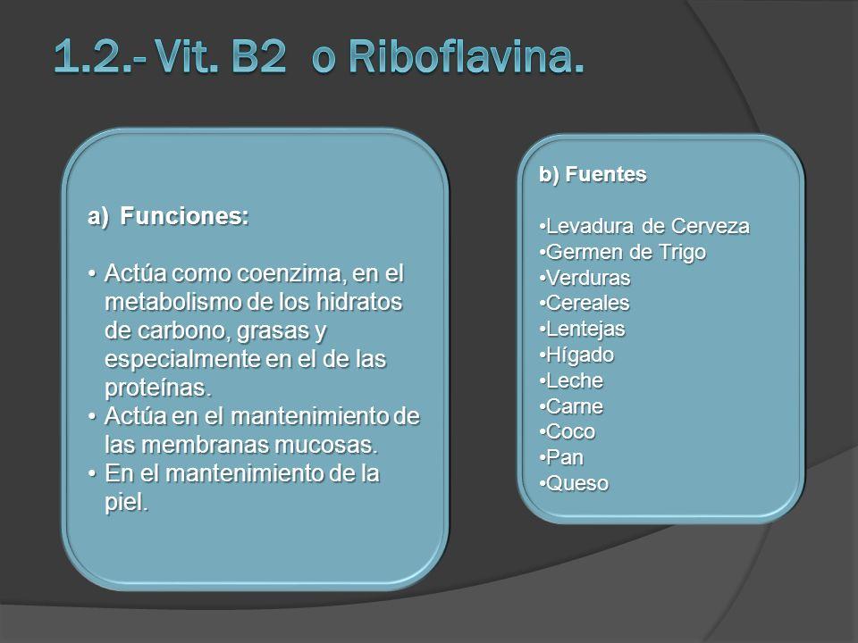1.2.- Vit. B2 o Riboflavina. Funciones:
