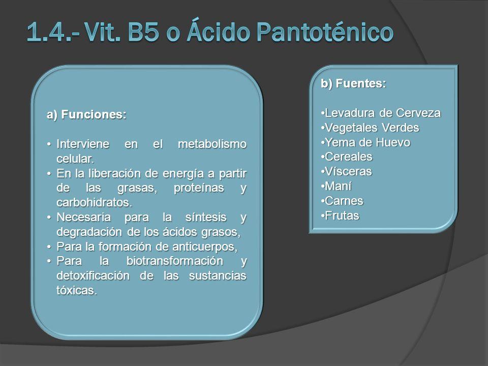 1.4.- Vit. B5 o Ácido Pantoténico