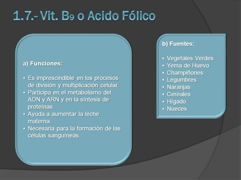 1.7.- Vit. B9 o Acido Fólico b) Fuentes: Vegetales Verdes