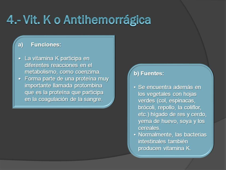 4.- Vit. K o Antihemorrágica