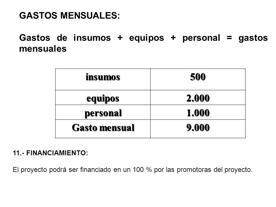 insumos 500 equipos 2.000 personal 1.000 Gasto mensual 9.000