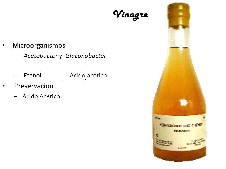 Vinagre Microorganismos Preservación Acetobacter y Gluconobacter
