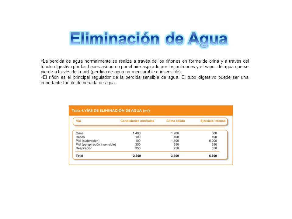 Eliminación de Agua