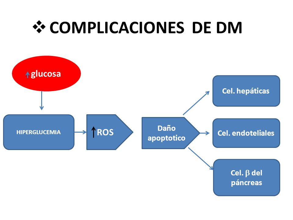 COMPLICACIONES DE DM glucosa ROS Cel. hepáticas Daño apoptotico