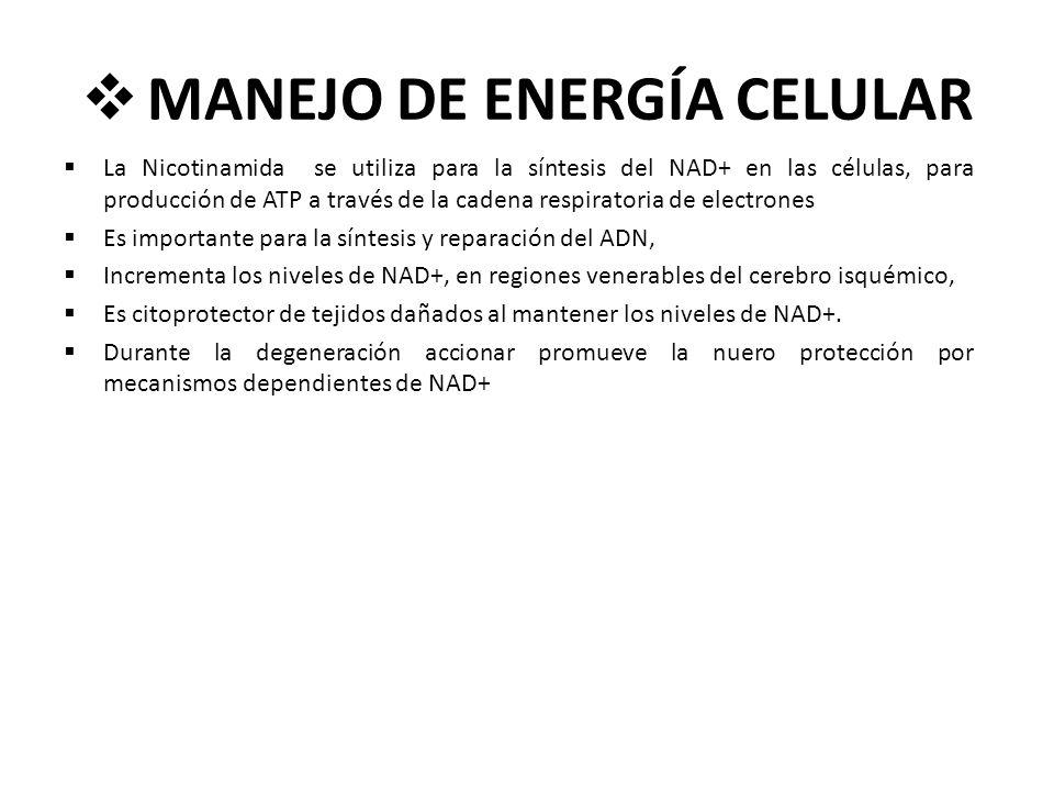 MANEJO DE ENERGÍA CELULAR