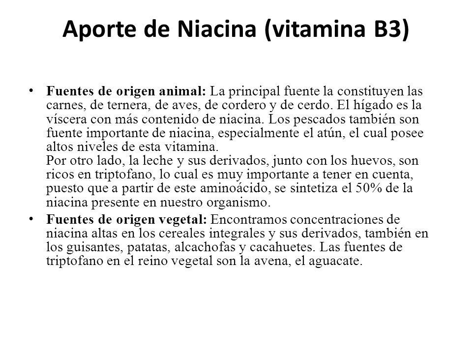Aporte de Niacina (vitamina B3)