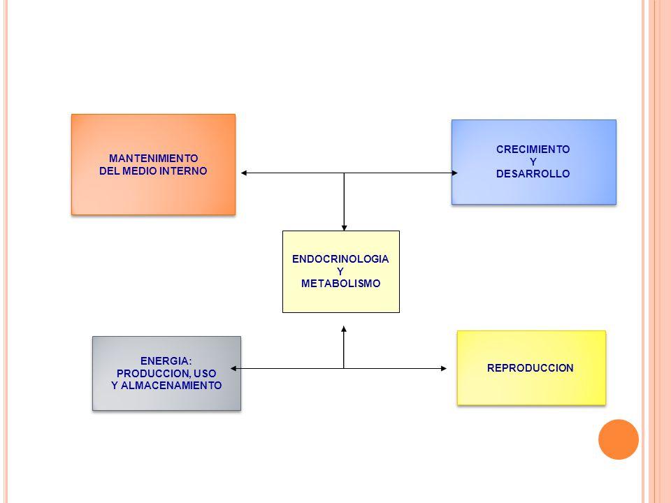 MANTENIMIENTO DEL MEDIO INTERNO. CRECIMIENTO. Y. DESARROLLO. ENDOCRINOLOGIA. Y. METABOLISMO. REPRODUCCION.