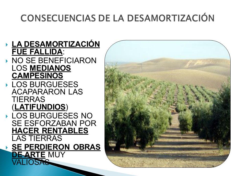 CONSECUENCIAS DE LA DESAMORTIZACIÓN