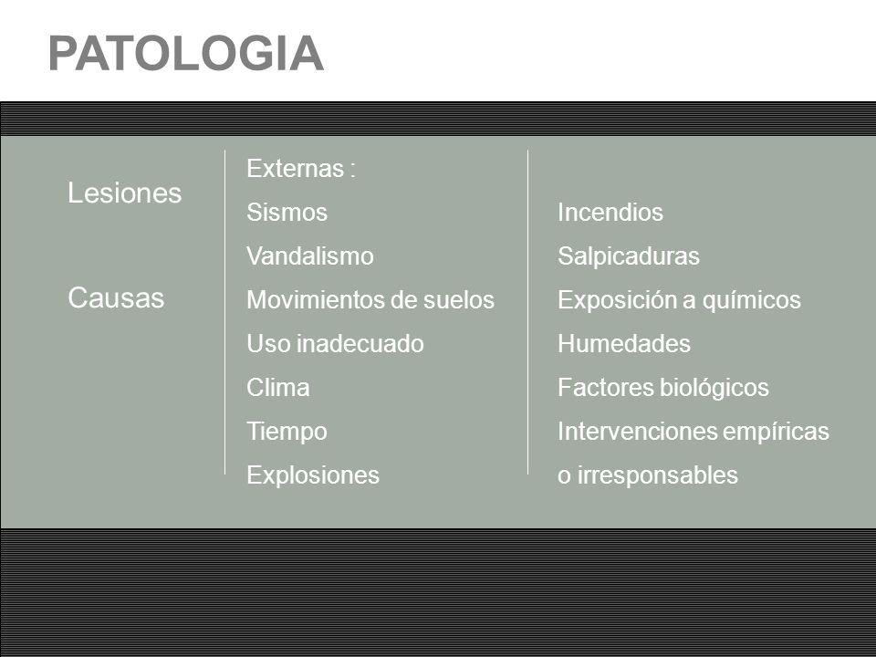PATOLOGIA Lesiones Causas Externas : Sismos Vandalismo
