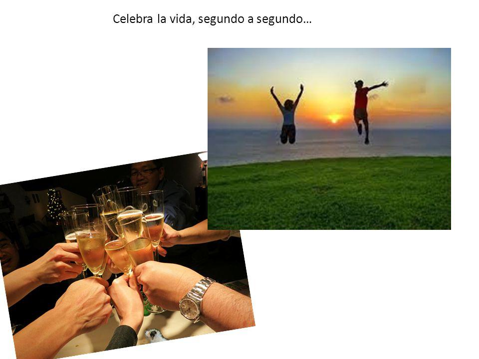 Celebra la vida, segundo a segundo…