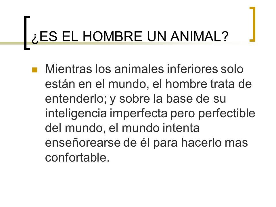 ¿ES EL HOMBRE UN ANIMAL