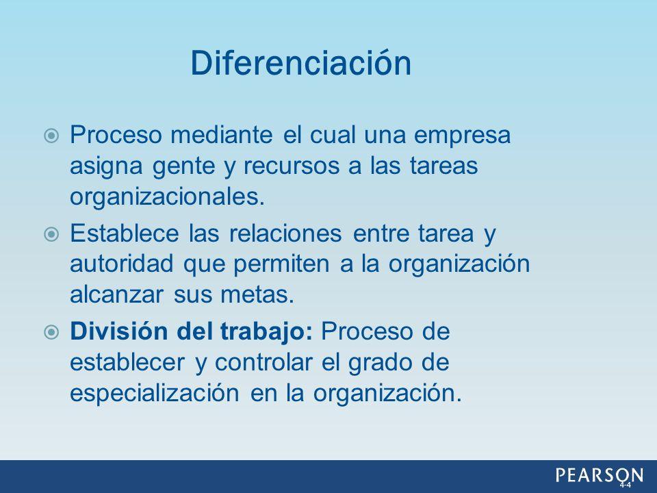 Diferenciación Proceso mediante el cual una empresa asigna gente y recursos a las tareas organizacionales.
