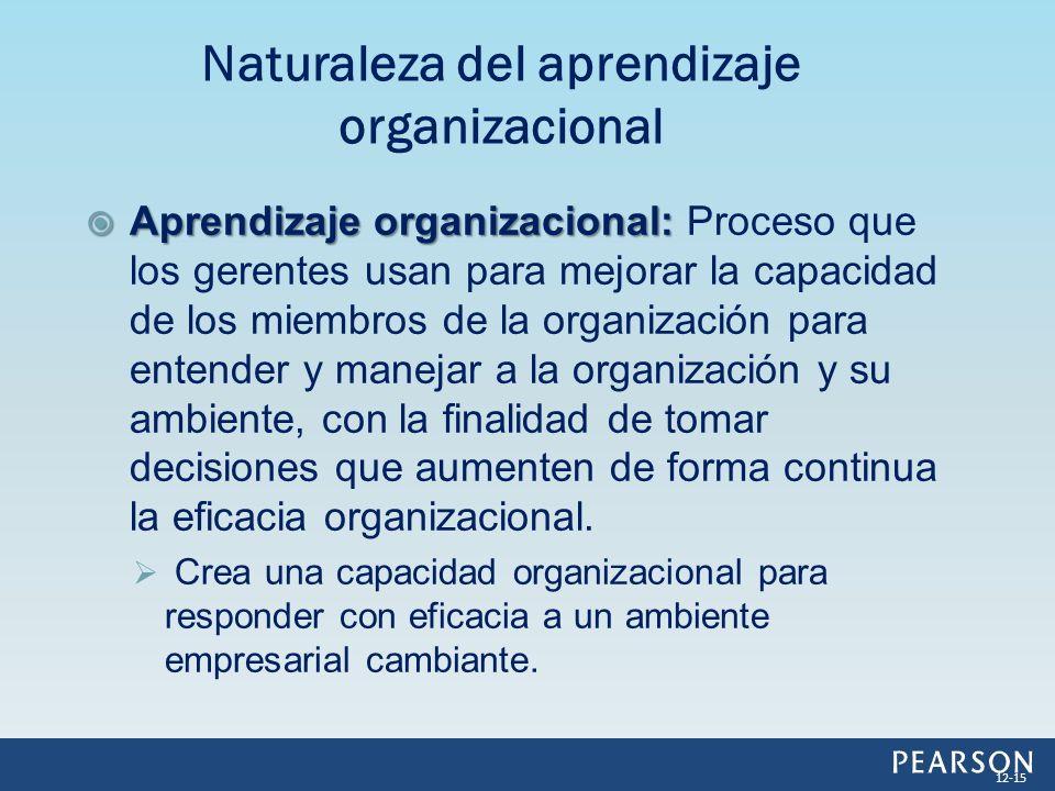 Naturaleza del aprendizaje organizacional