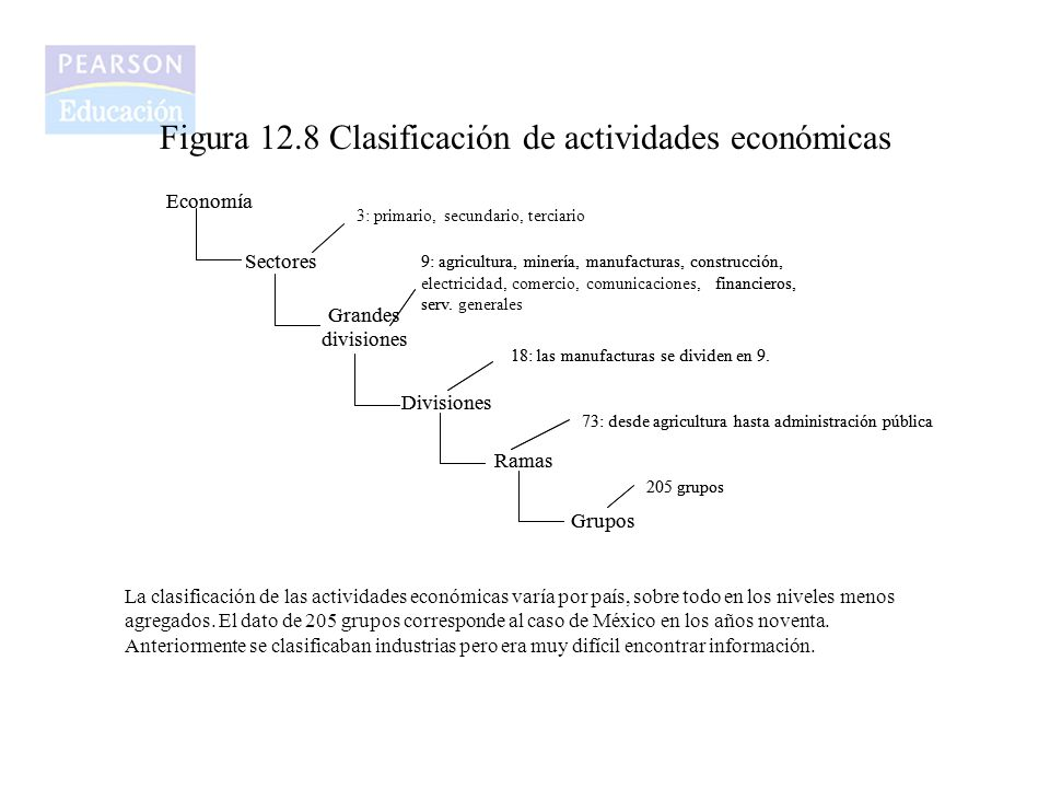 Figura 12.8 Clasificación de actividades económicas