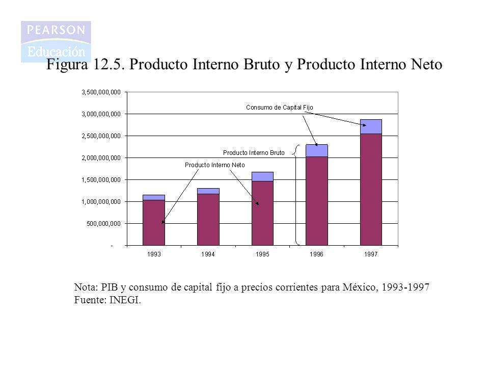Figura 12.5. Producto Interno Bruto y Producto Interno Neto