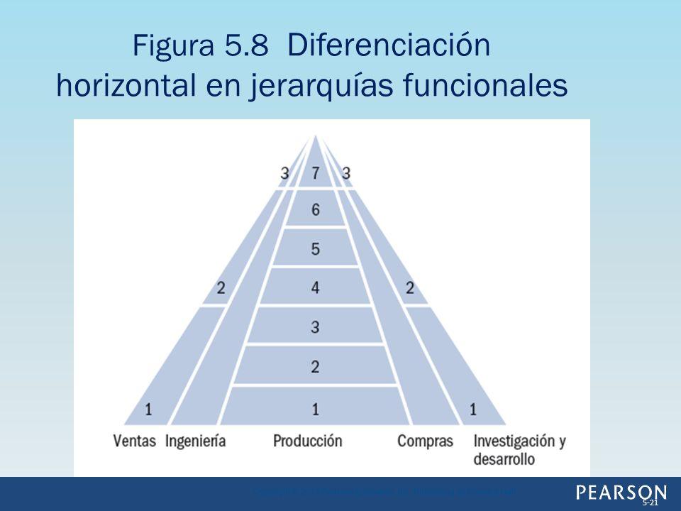 Figura 5.8 Diferenciación horizontal en jerarquías funcionales