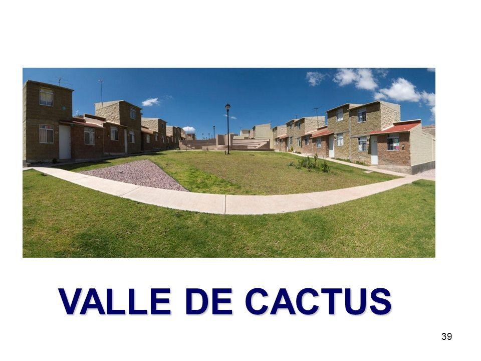 VALLE DE CACTUS
