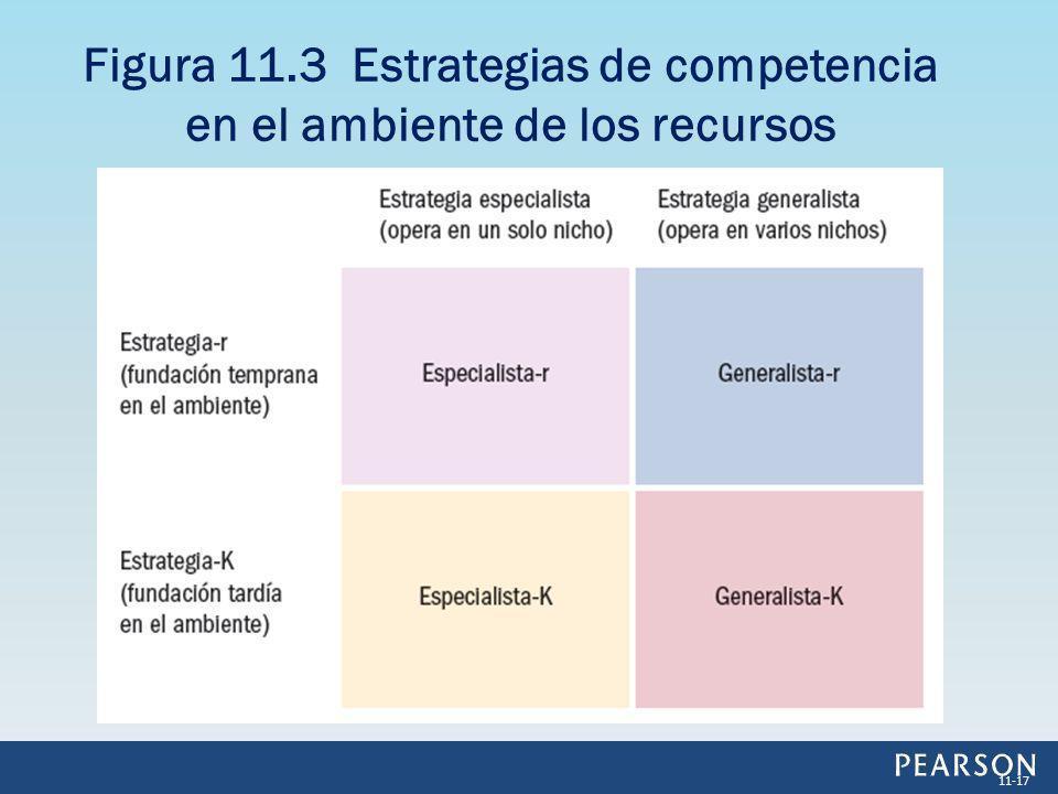 Figura 11.3 Estrategias de competencia en el ambiente de los recursos