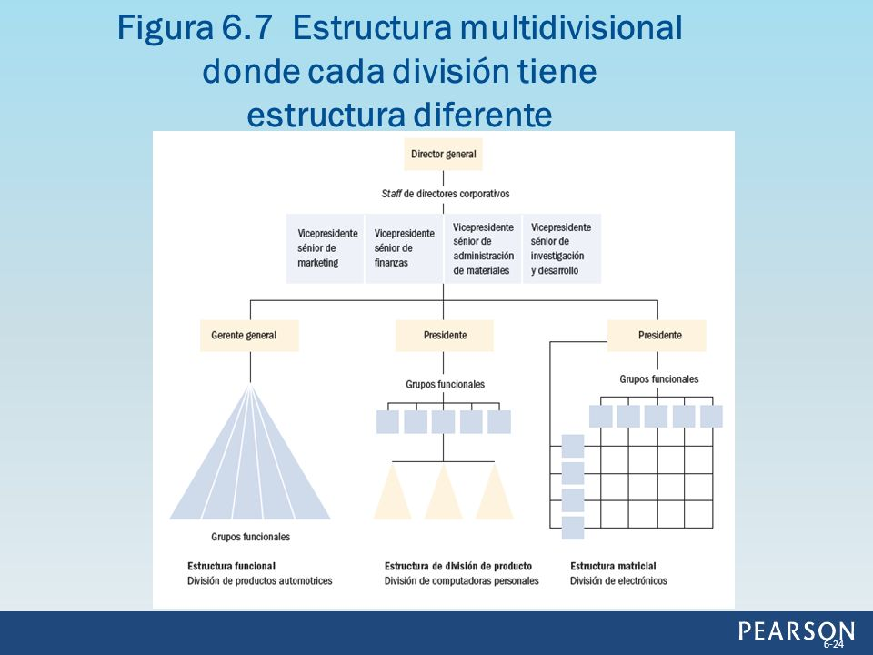 Figura 6.7 Estructura multidivisional donde cada división tiene estructura diferente