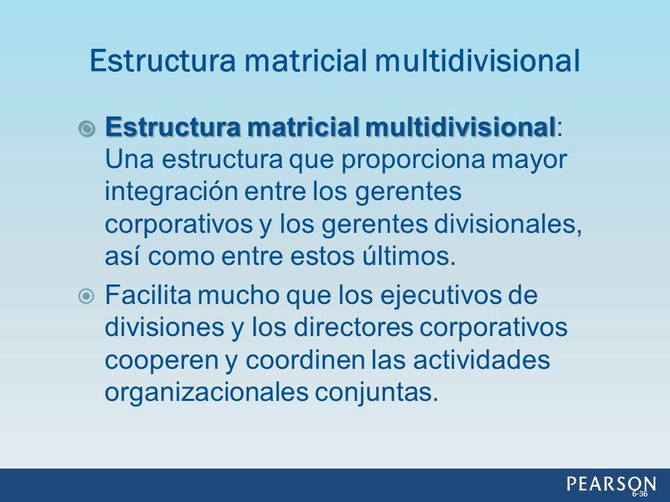 Estructura matricial multidivisional