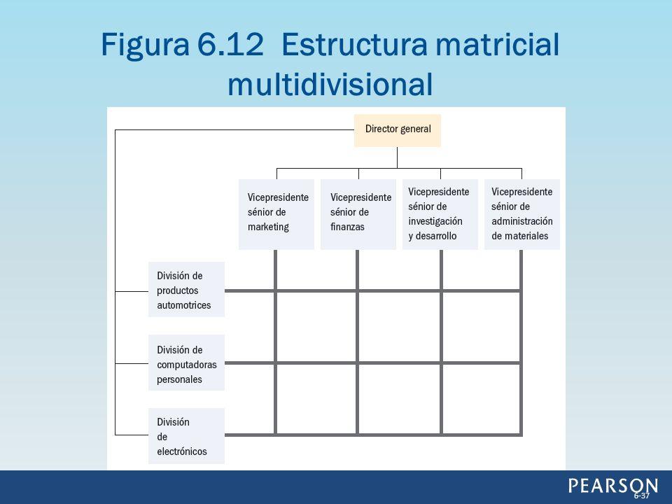 Figura 6.12 Estructura matricial multidivisional