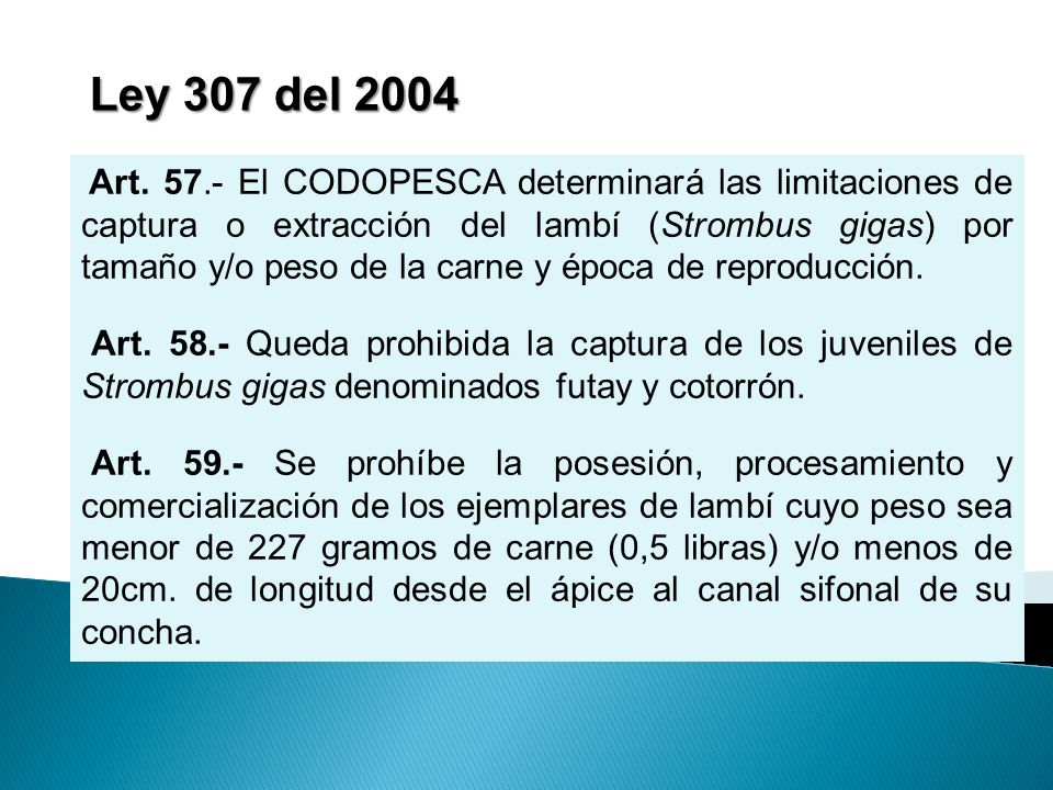 Ley 307 del 2004