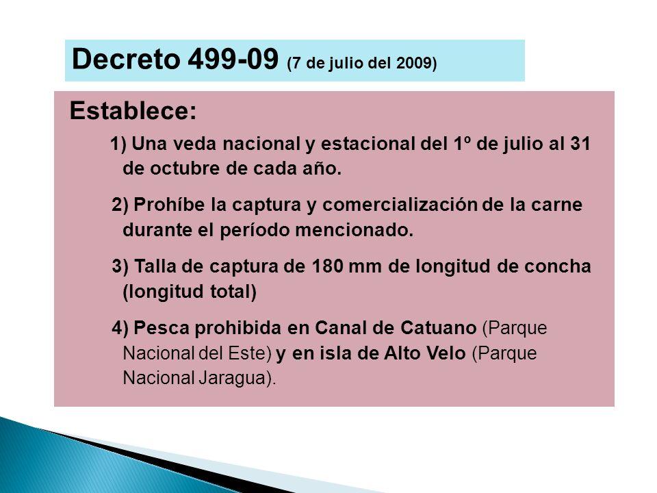 Decreto 499-09 (7 de julio del 2009)