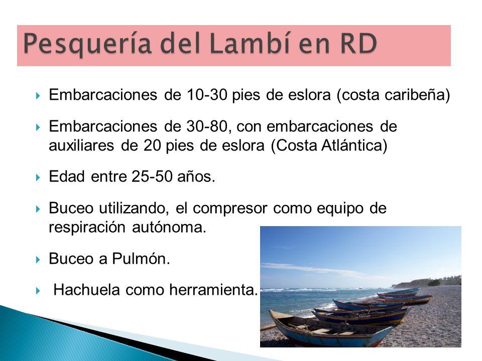 Pesquería del Lambí en RD