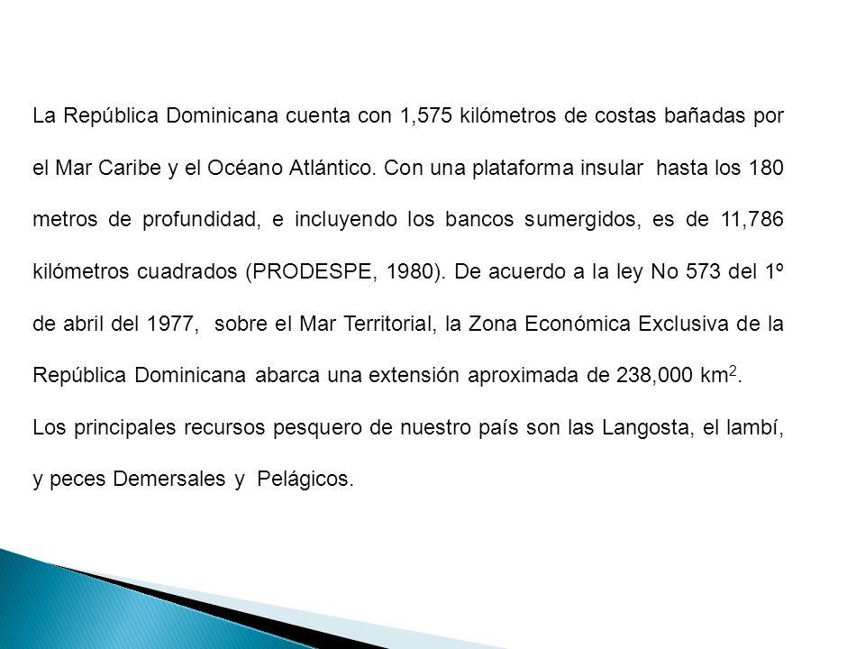 La República Dominicana cuenta con 1,575 kilómetros de costas bañadas por el Mar Caribe y el Océano Atlántico. Con una plataforma insular hasta los 180 metros de profundidad, e incluyendo los bancos sumergidos, es de 11,786 kilómetros cuadrados (PRODESPE, 1980). De acuerdo a la ley No 573 del 1º de abril del 1977, sobre el Mar Territorial, la Zona Económica Exclusiva de la República Dominicana abarca una extensión aproximada de 238,000 km2.