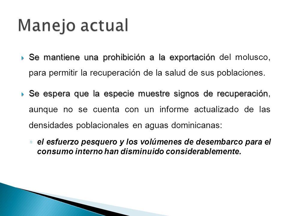Manejo actual Se mantiene una prohibición a la exportación del molusco, para permitir la recuperación de la salud de sus poblaciones.