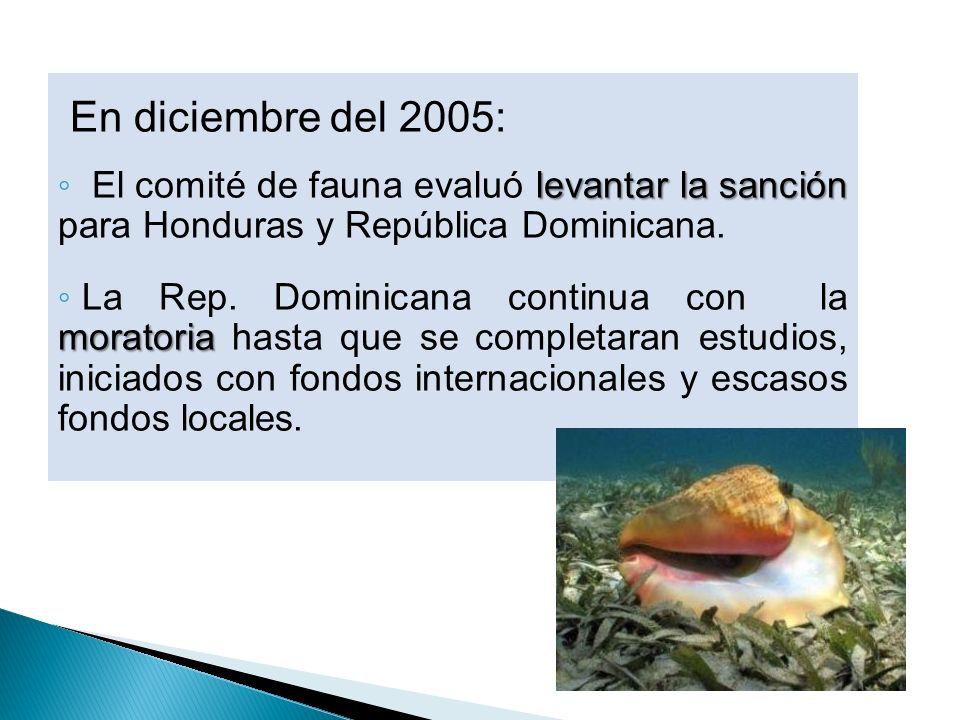 En diciembre del 2005:El comité de fauna evaluó levantar la sanción para Honduras y República Dominicana.