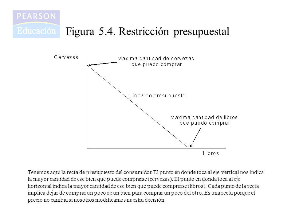 Figura 5.4. Restricción presupuestal