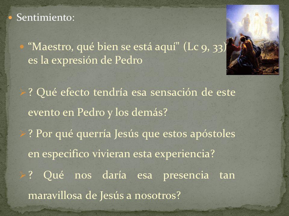 Maestro, qué bien se está aquí (Lc 9, 33): es la expresión de Pedro